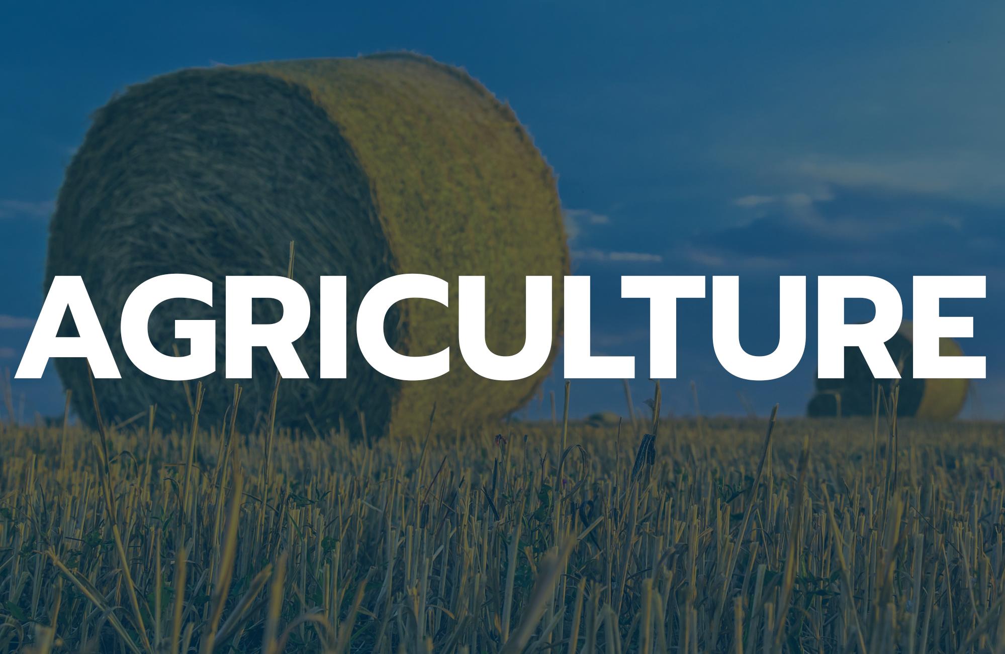 matériel marché agriculture